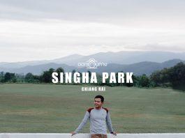 เที่ยว สิงห์ปาร์ค Singha Park (ไร่บุญรอด) เชียงราย กันแบบเต็มวัน